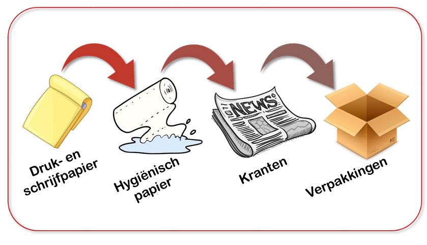 De recyclagecyclus van karton en papier
